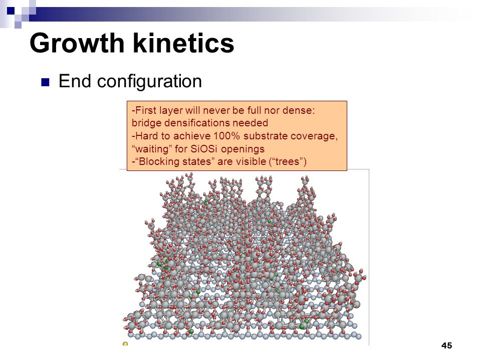 Growth kinetics End configuration