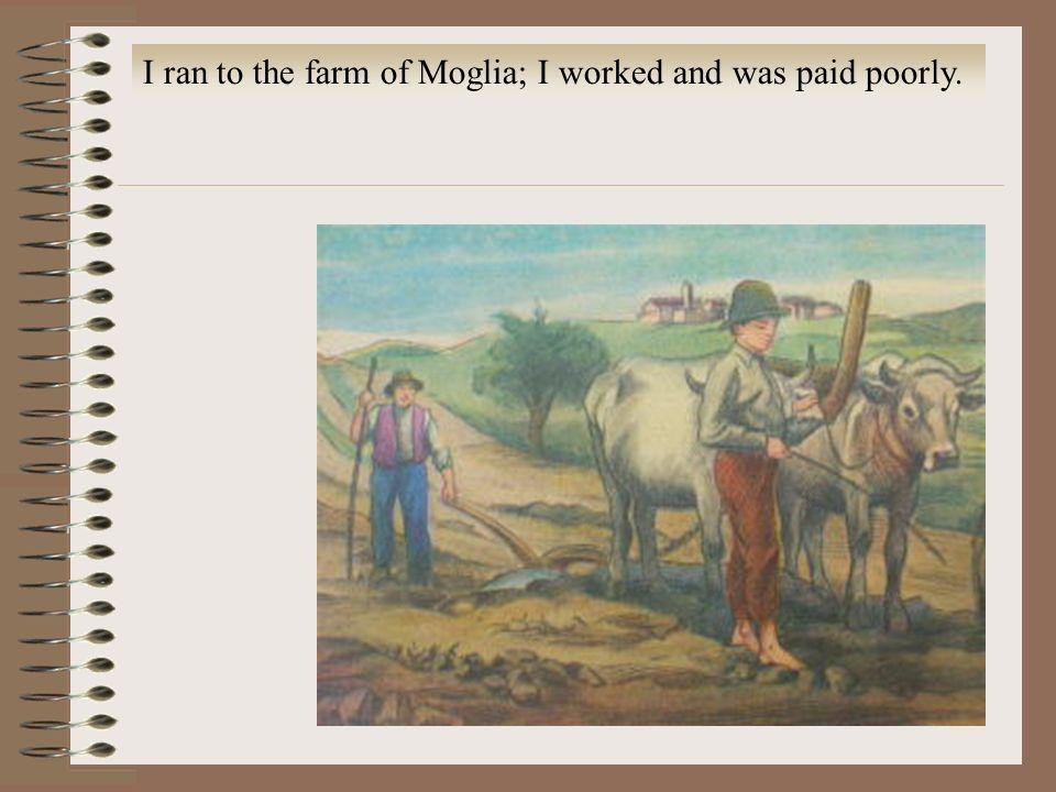I ran to the farm of Moglia; I worked and was paid poorly.