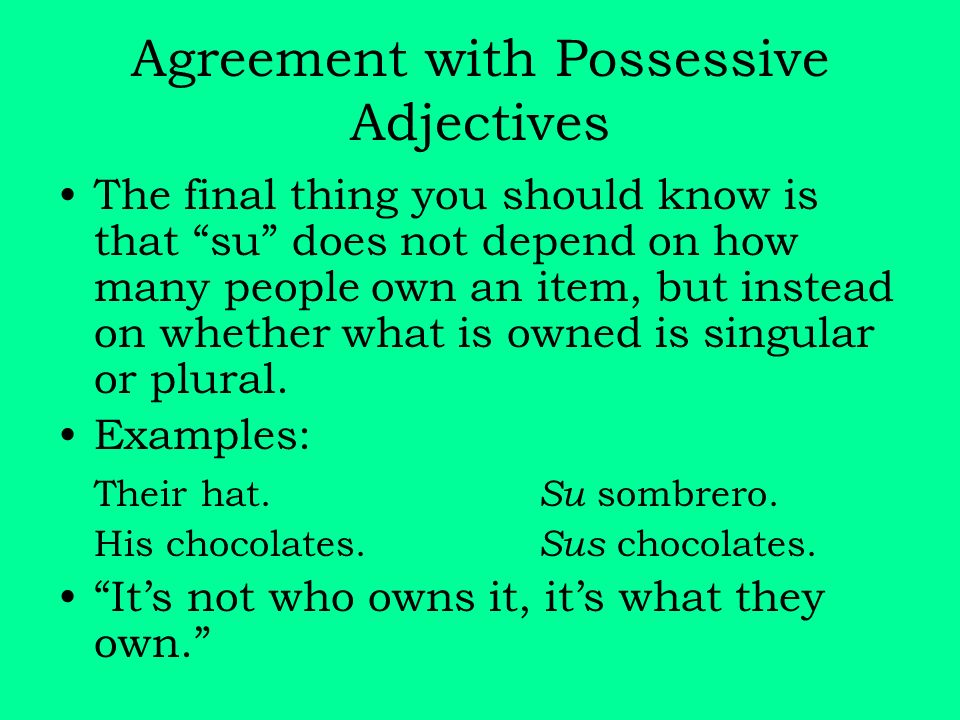 Agreement with Possessive Adjectives