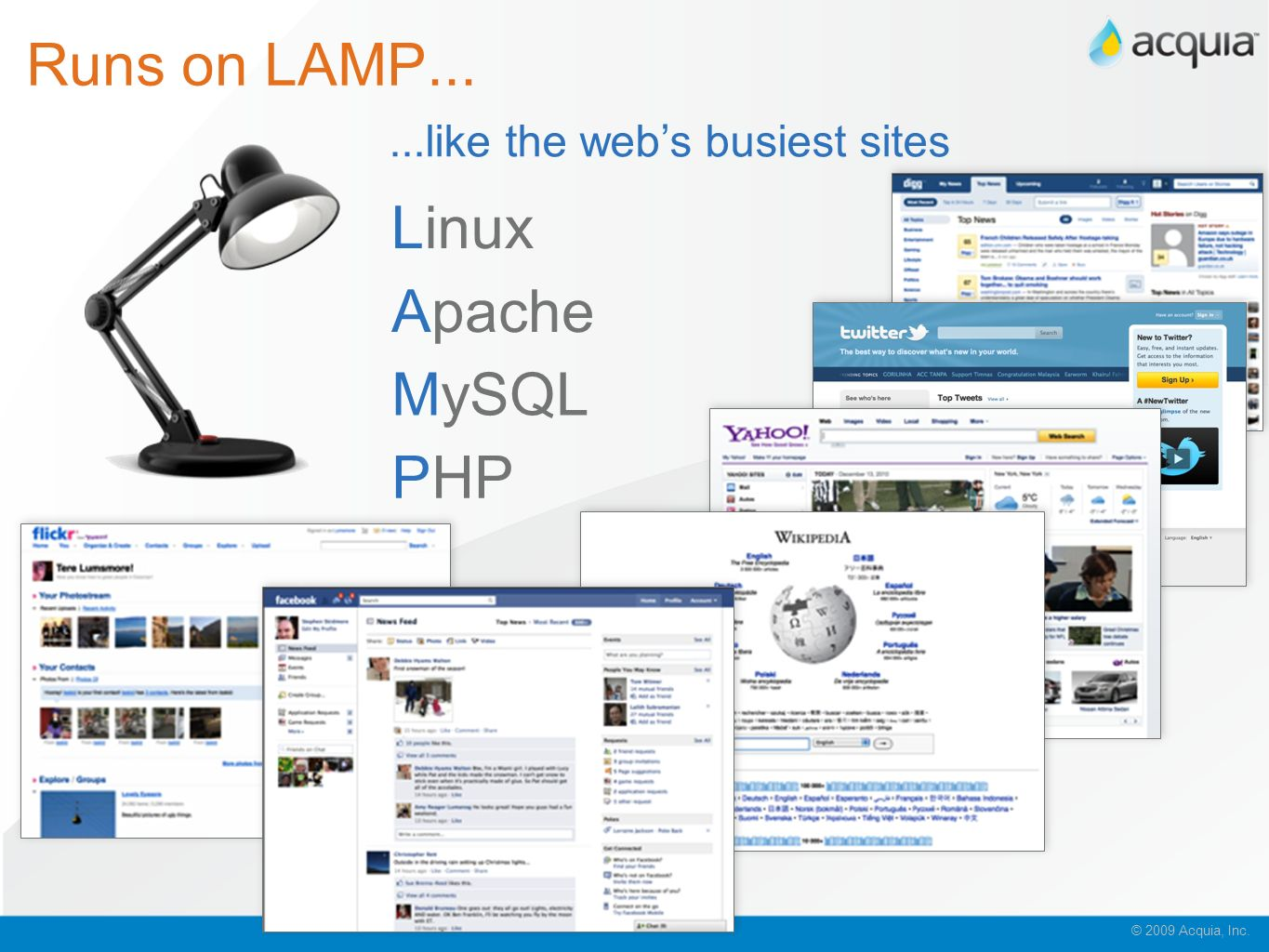 Runs on LAMP... Linux Apache MySQL PHP ...like the web's busiest sites
