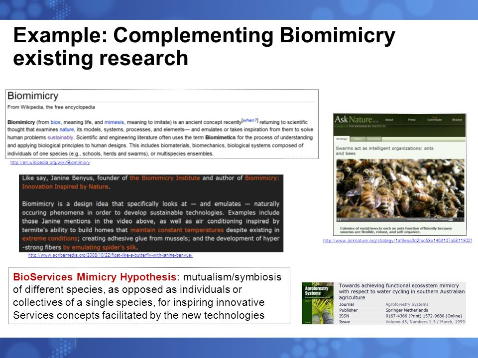 Example: Complementing Biomimicry existing research