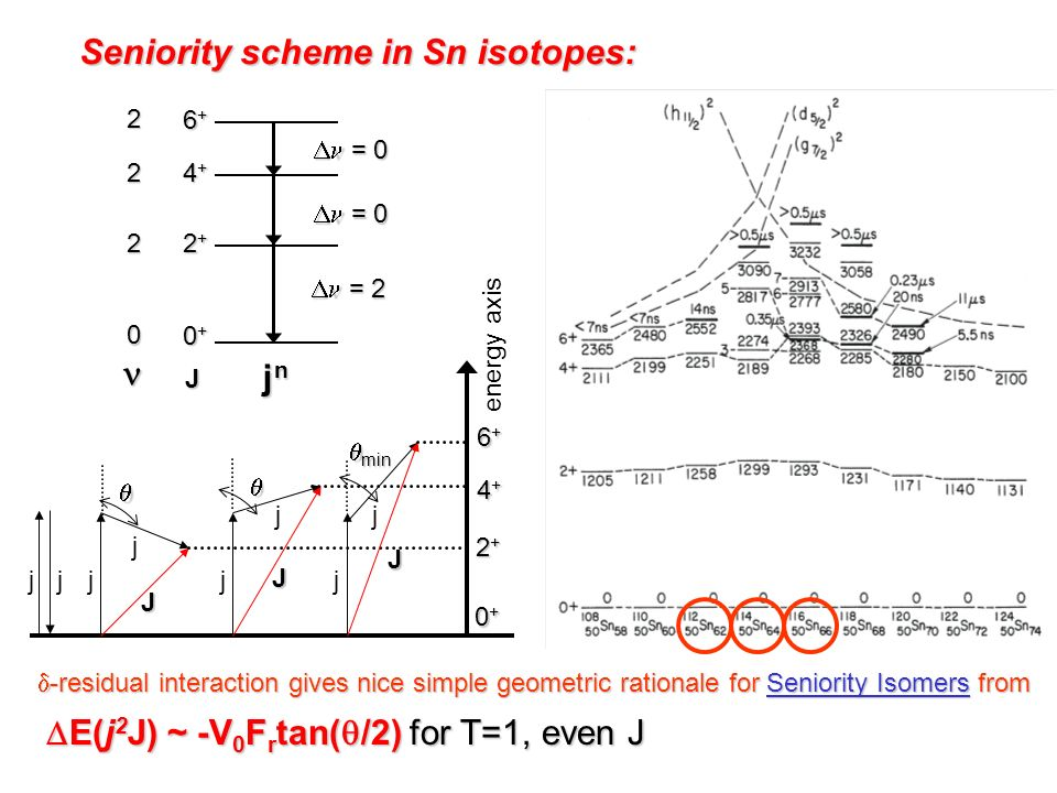 Seniority scheme in Sn isotopes: