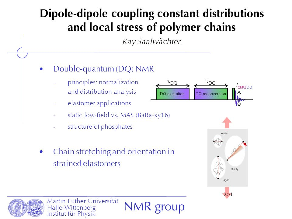 Dipole-dipole coupling constant distributions and local stress of polymer chains