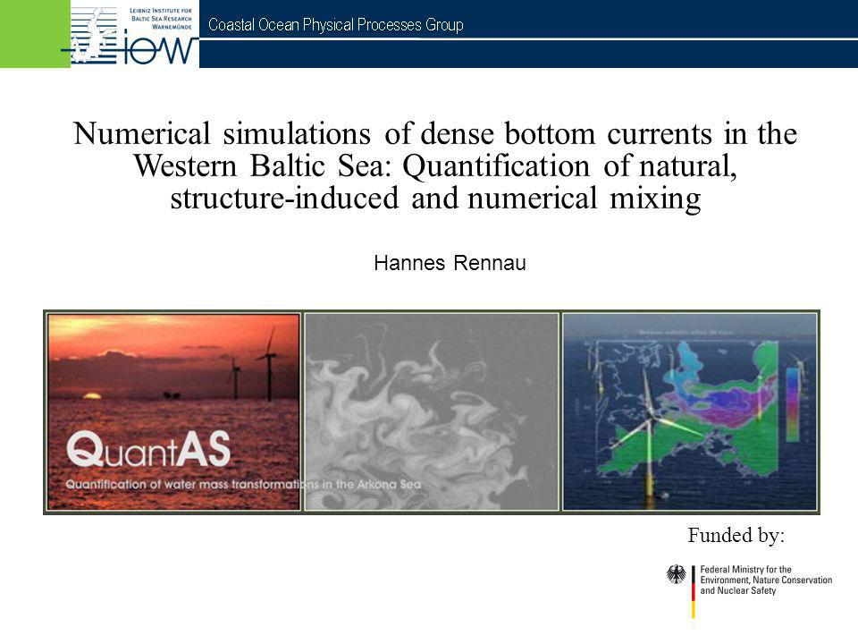 Numerical simulations of dense bottom currents in the Western Baltic Sea: Quantification of natural, structure-induced and numerical mixing