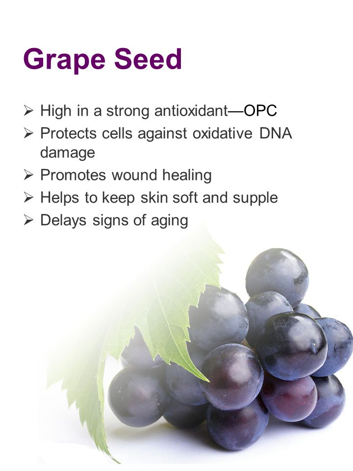 Grape Seed High in a strong antioxidant—OPC