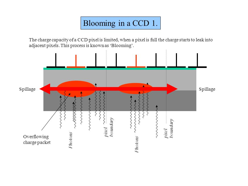 Blooming in a CCD 1. The charge capacity of a CCD pixel is limited, when a pixel is full the charge starts to leak into.