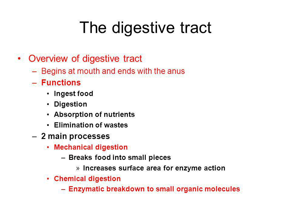 The digestive tract Overview of digestive tract