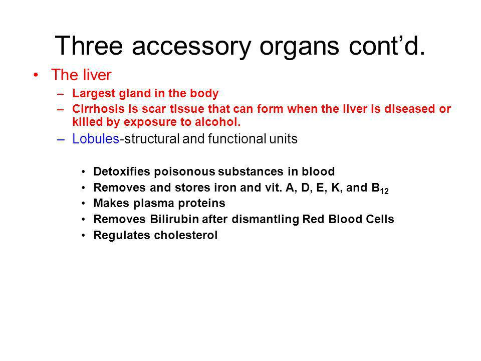 Three accessory organs cont'd.