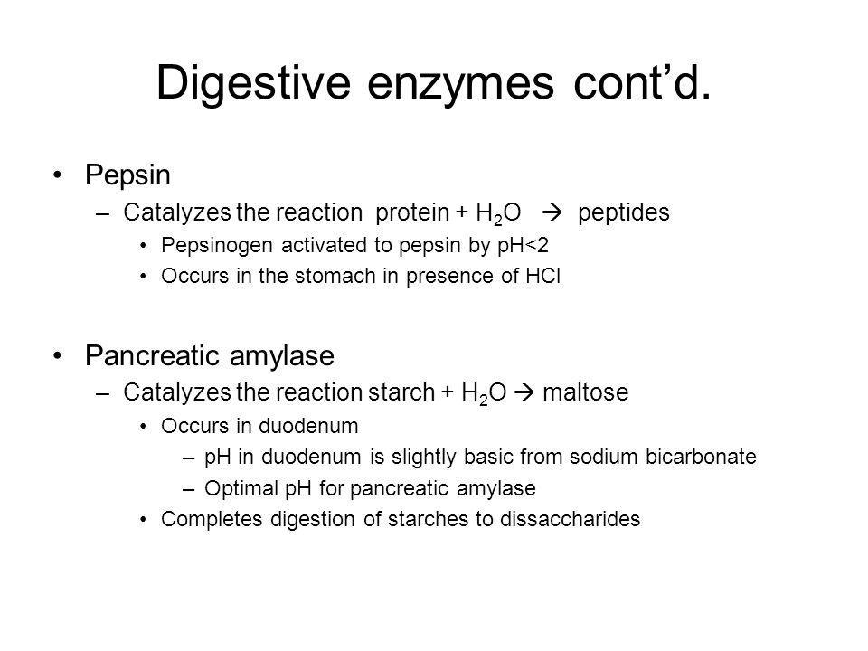 Digestive enzymes cont'd.