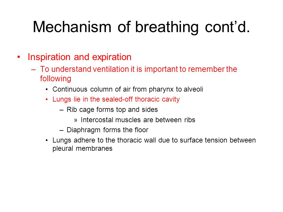 Mechanism of breathing cont'd.