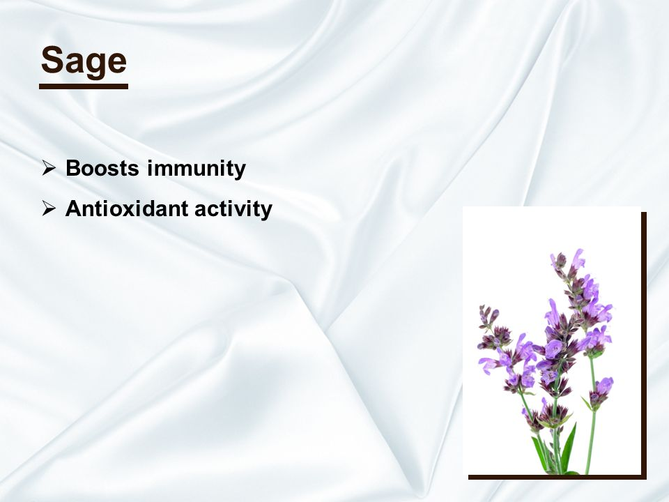 Sage Boosts immunity Antioxidant activity
