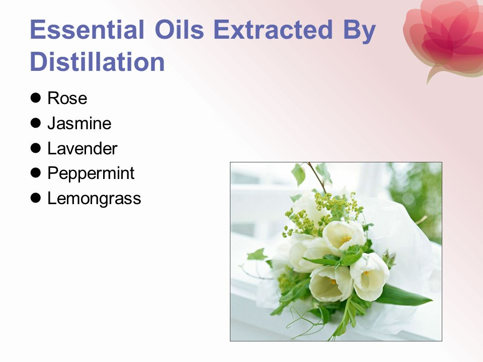 Essential Oils Extracted By Distillation