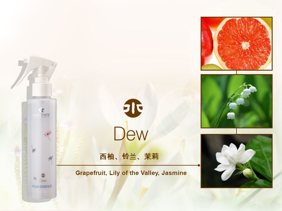Grapefruit, Lily of the Valley, Jasmine
