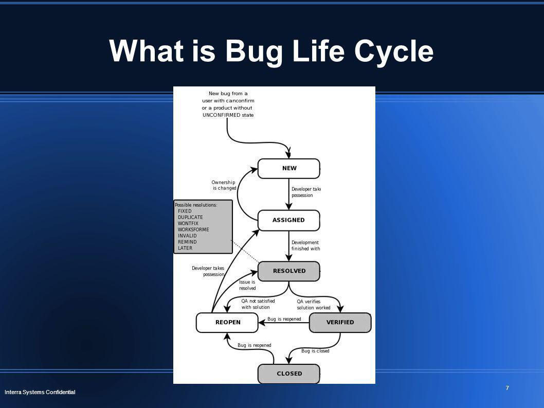 What is Bug Life Cycle