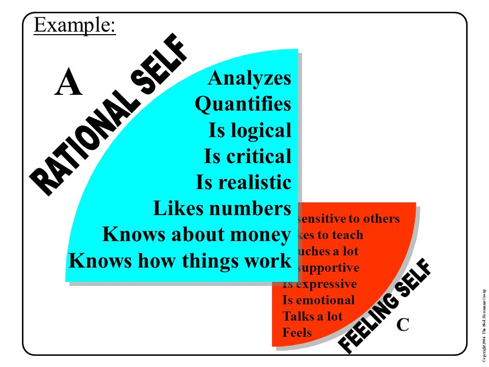 A RATIONAL SELF FEELING SELF Example: Analyzes Quantifies Is logical