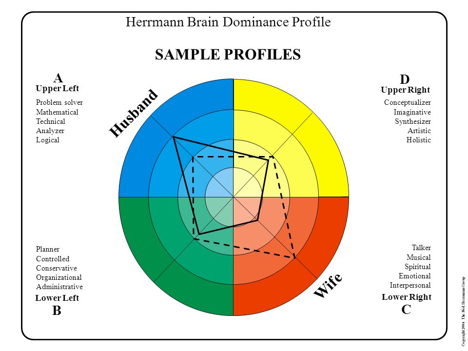 Herrmann Brain Dominance Profile