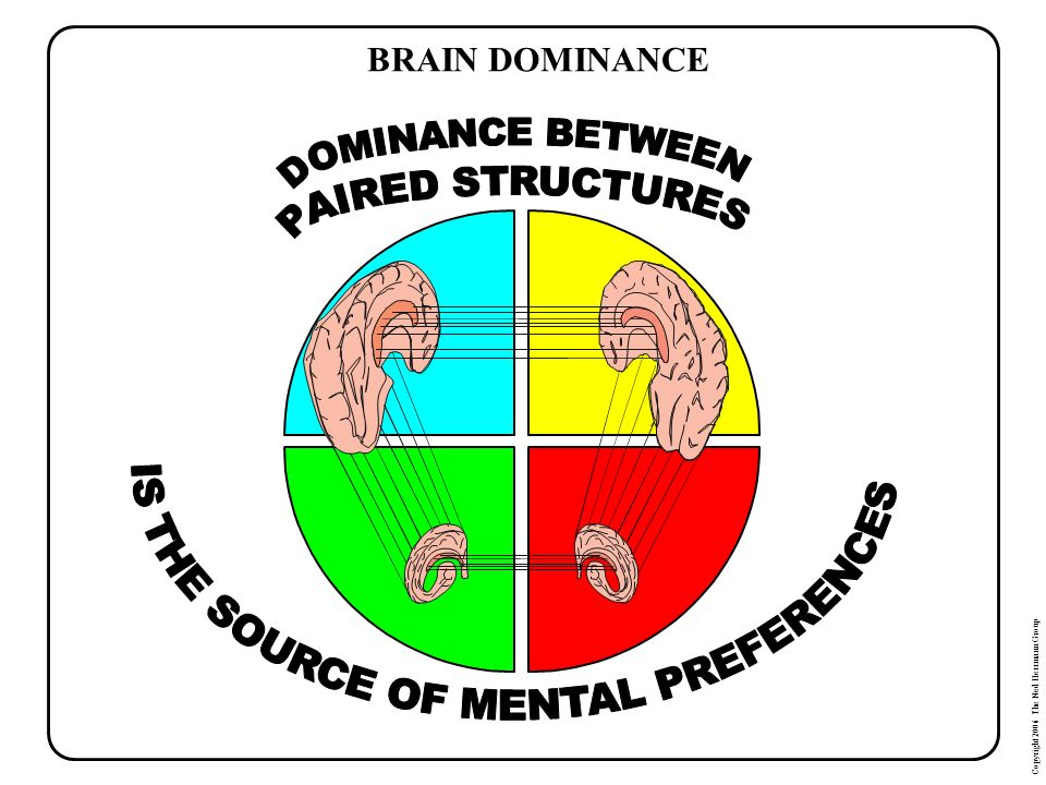 IS THE SOURCE OF MENTAL PREFERENCES