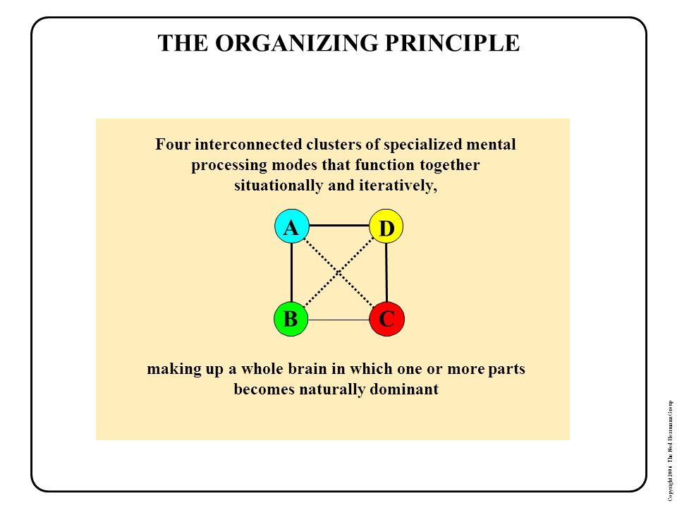 THE ORGANIZING PRINCIPLE