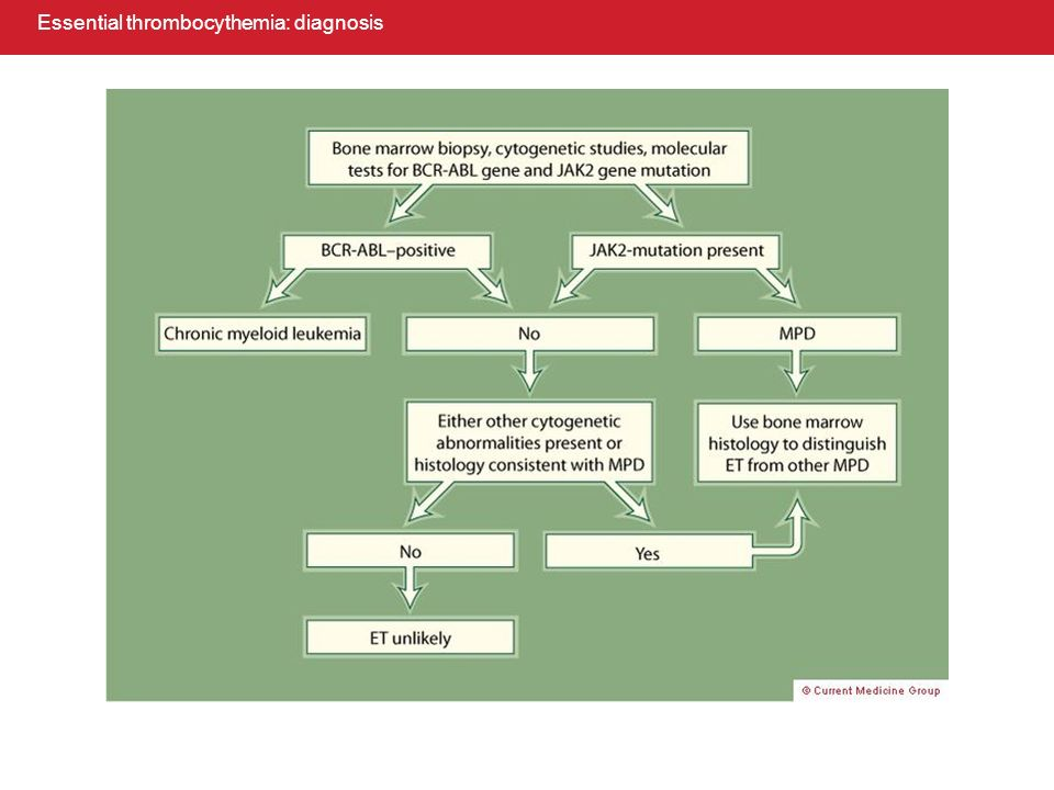 Essential thrombocythemia: diagnosis