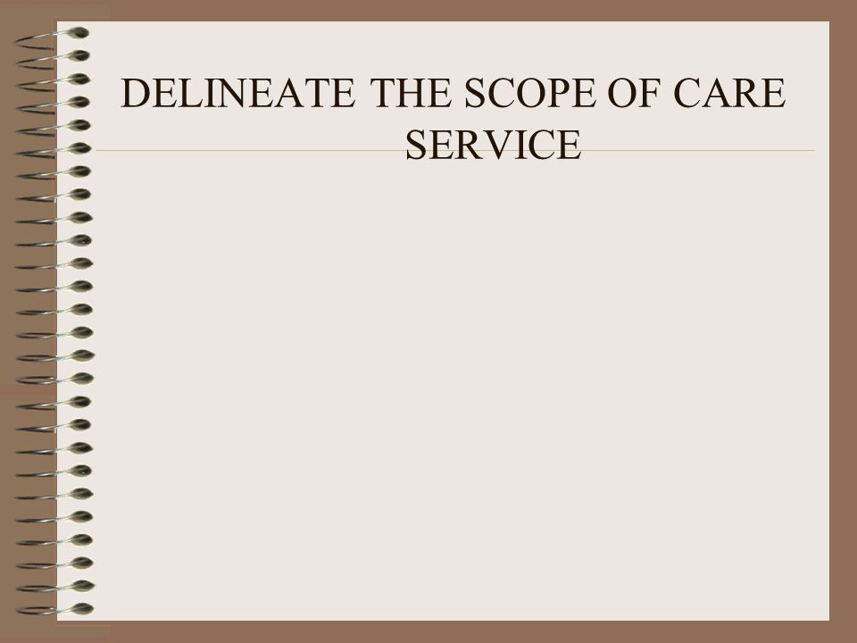 DELINEATE THE SCOPE OF CARE SERVICE