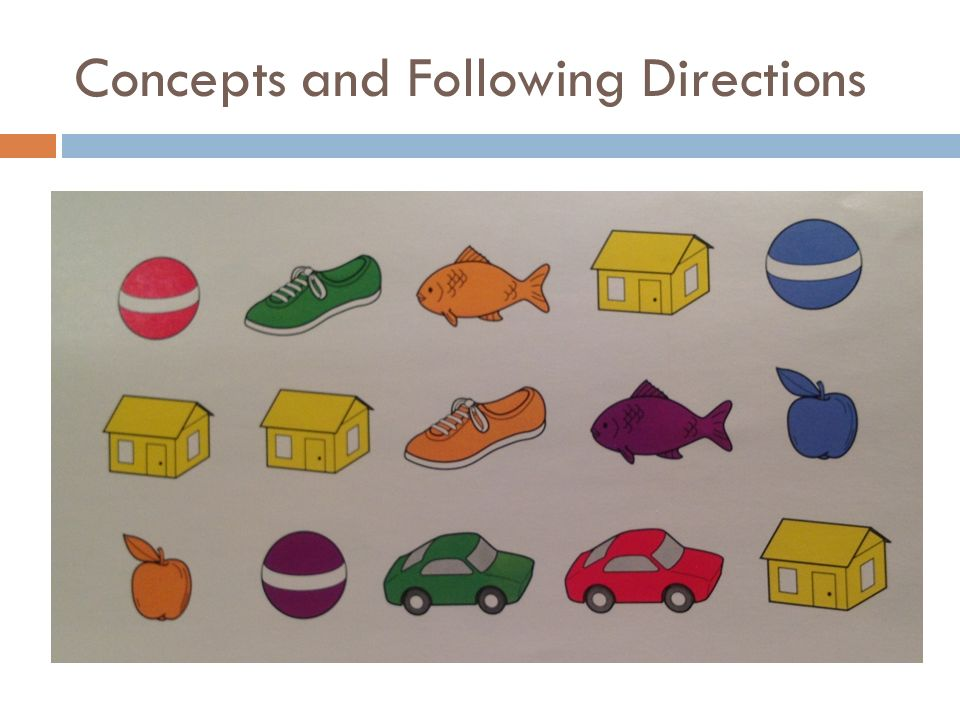 Concepts and Following Directions