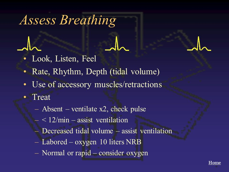 Assess Breathing Look, Listen, Feel Rate, Rhythm, Depth (tidal volume)