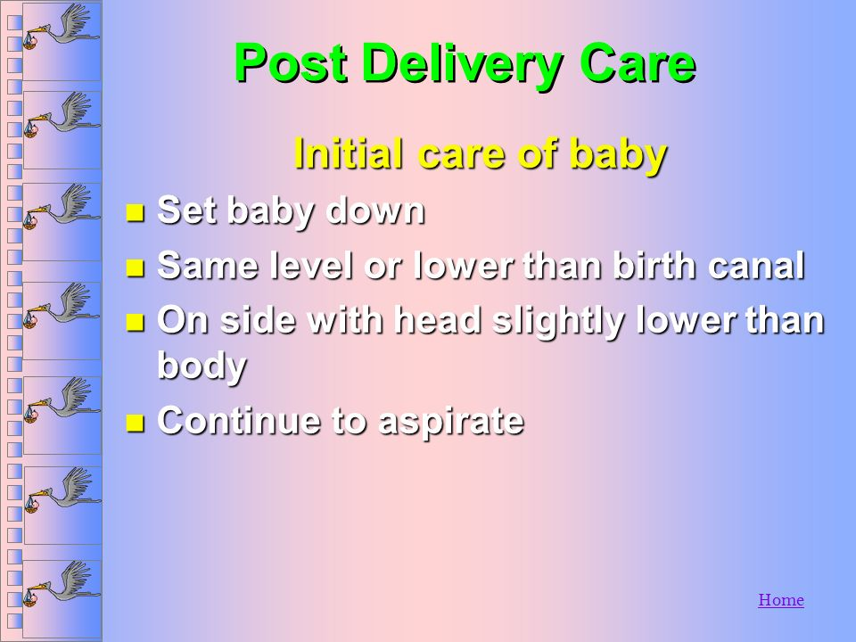 Post Delivery Care Initial care of baby Set baby down