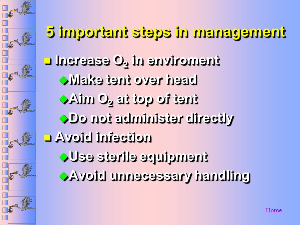 5 important steps in management