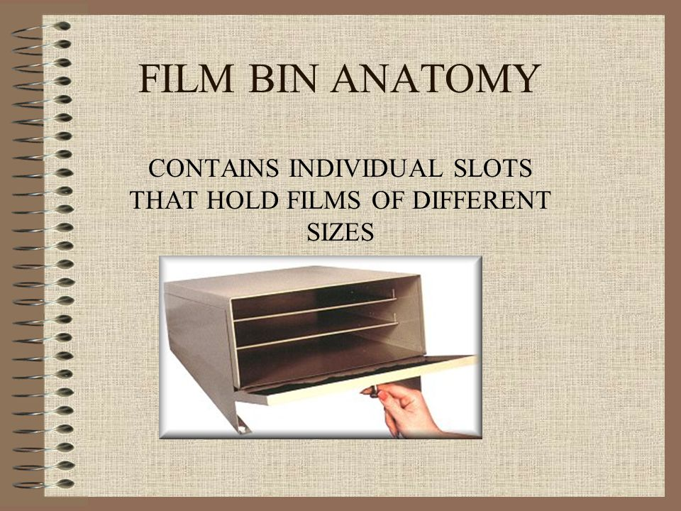 CONTAINS INDIVIDUAL SLOTS THAT HOLD FILMS OF DIFFERENT SIZES