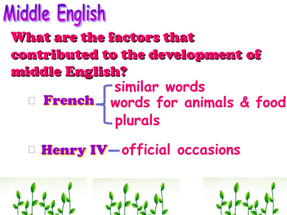 words for animals & food plurals