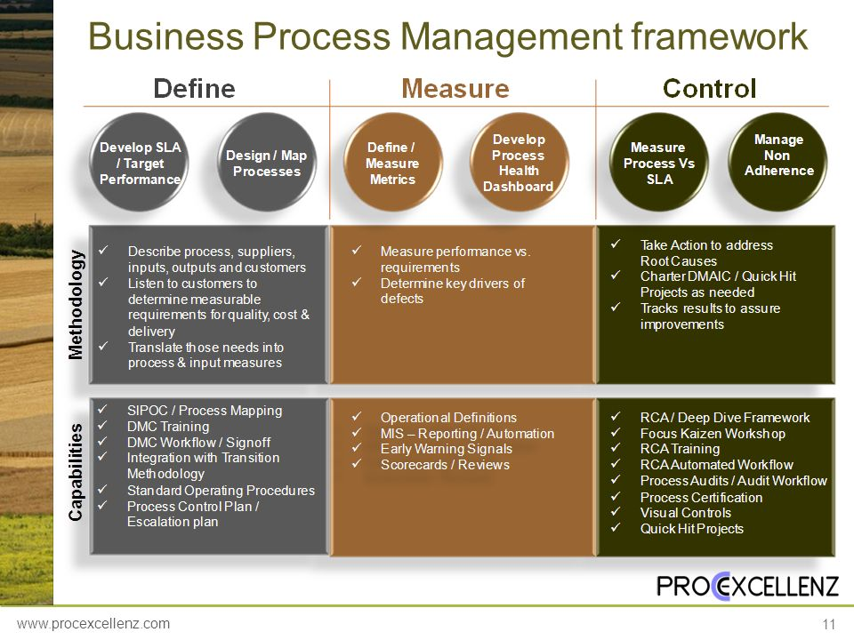 Business Process Management framework