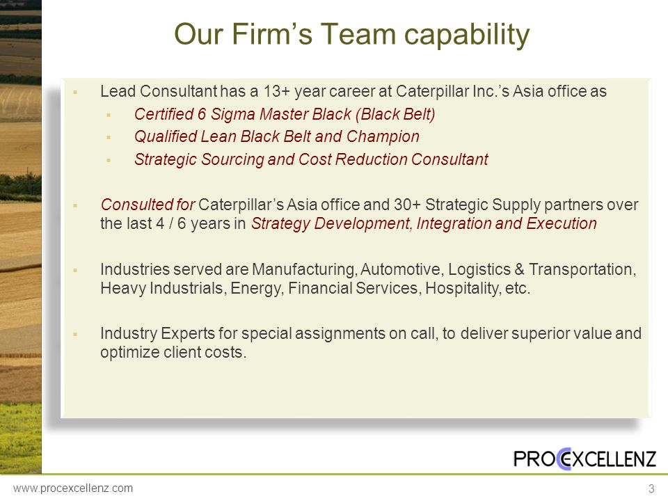 Our Firm's Team capability