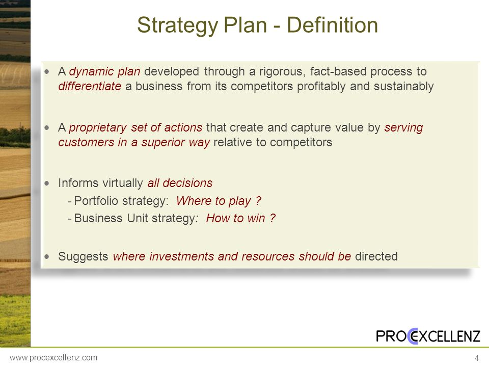 Strategy Plan - Definition