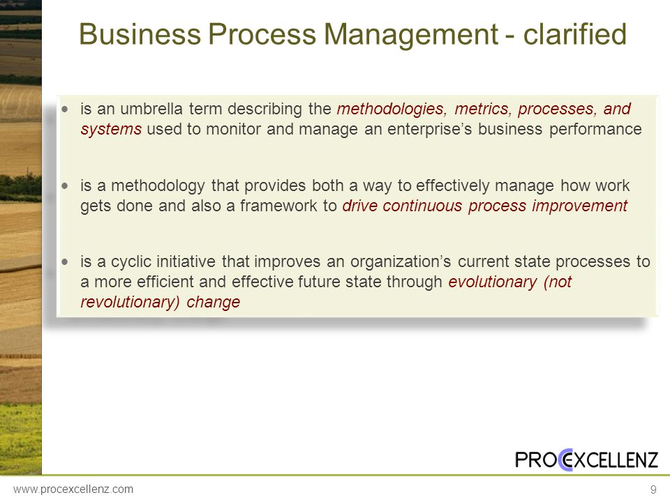 Business Process Management - clarified