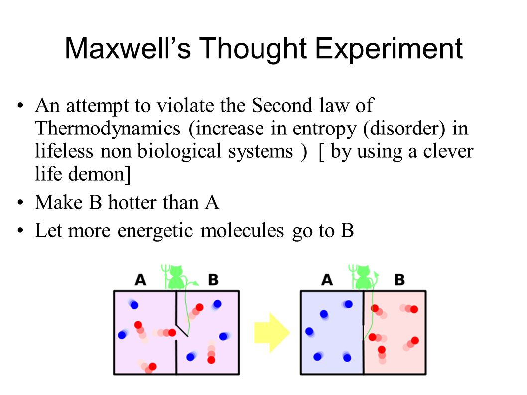 Maxwell's Thought Experiment