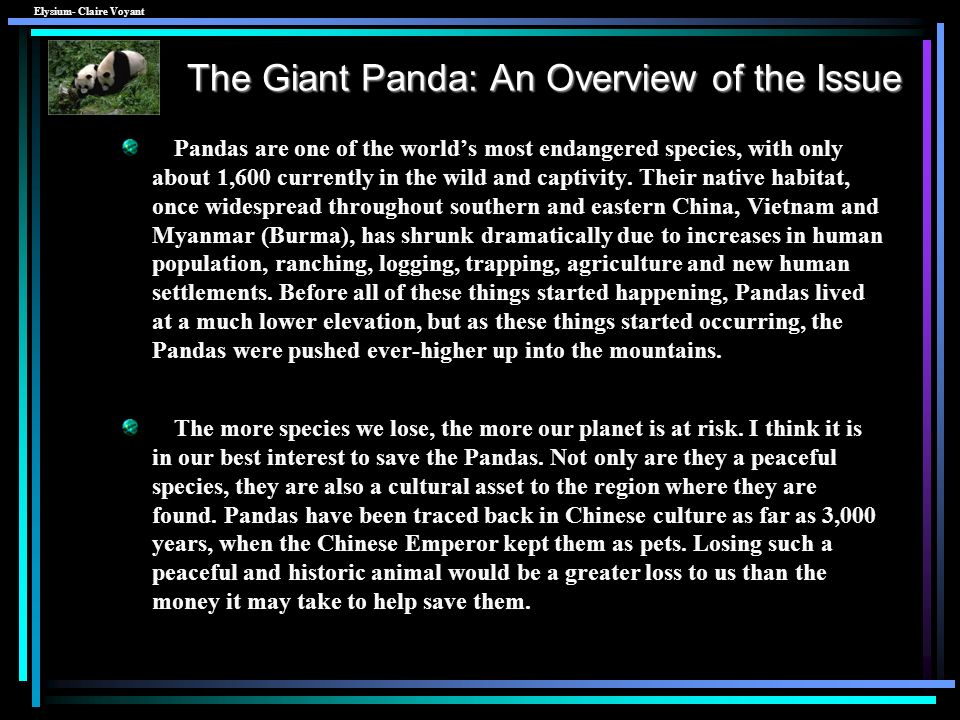 The Giant Panda: An Overview of the Issue
