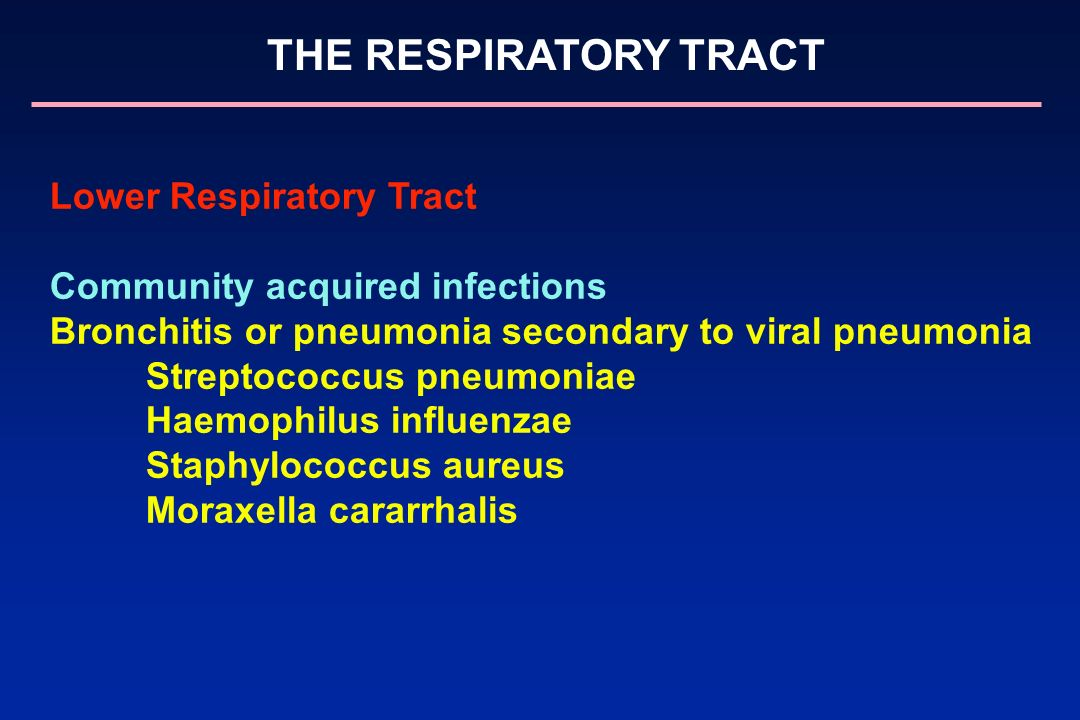 Lower Respiratory Tract Community acquired infections