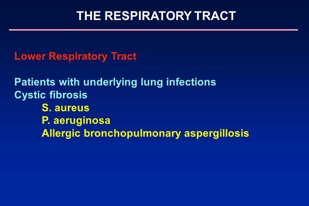 Lower Respiratory Tract Patients with underlying lung infections