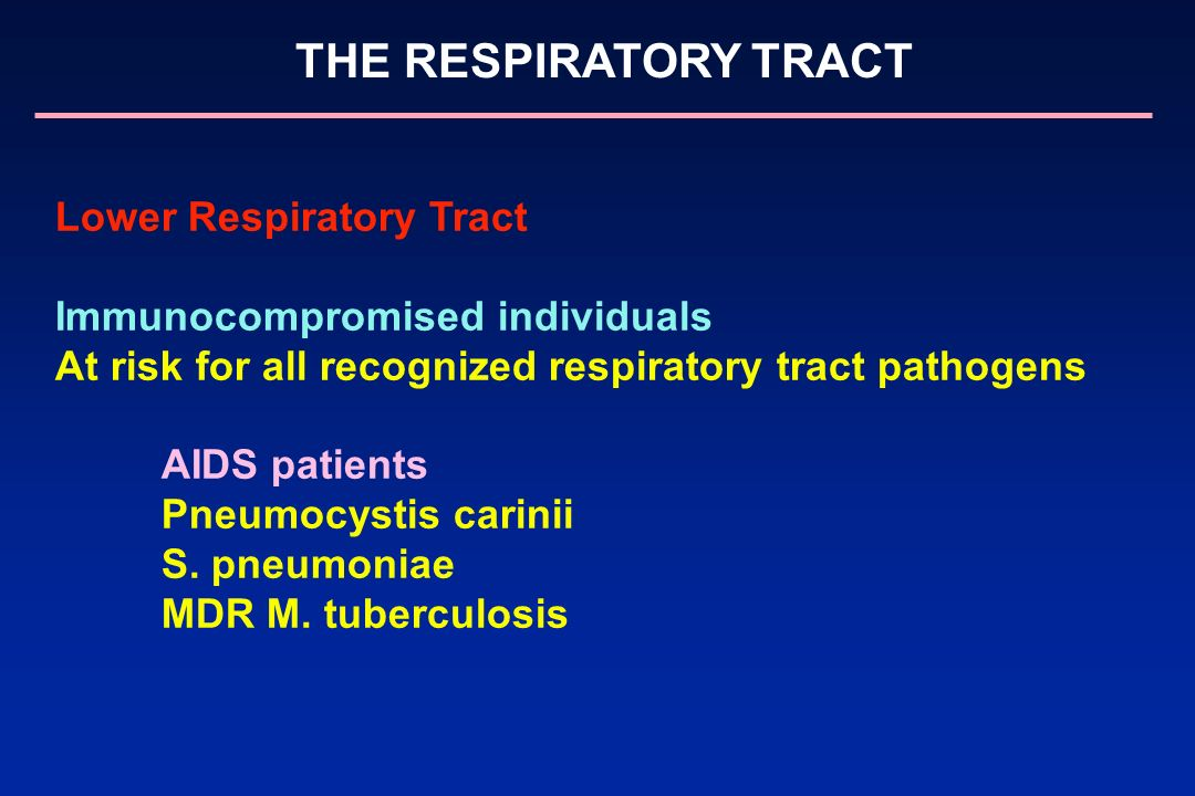 Lower Respiratory Tract Immunocompromised individuals