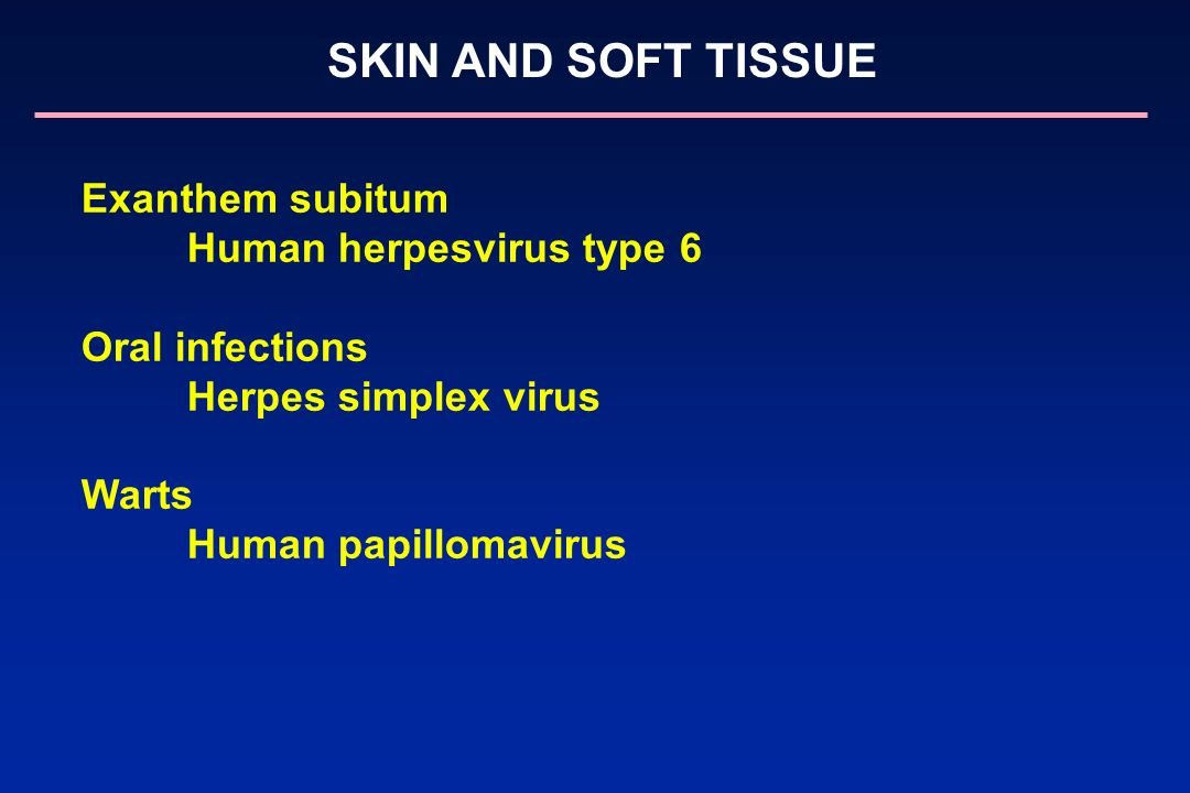 Human herpesvirus type 6 Oral infections Herpes simplex virus Warts
