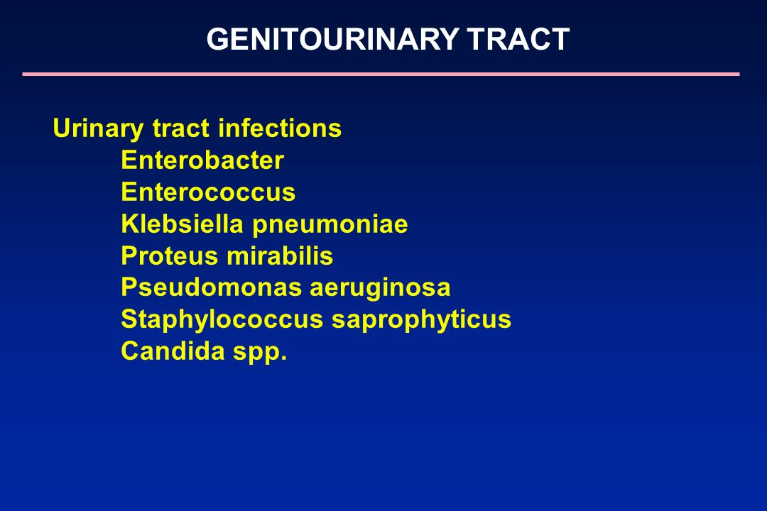 Urinary tract infections Enterobacter Enterococcus