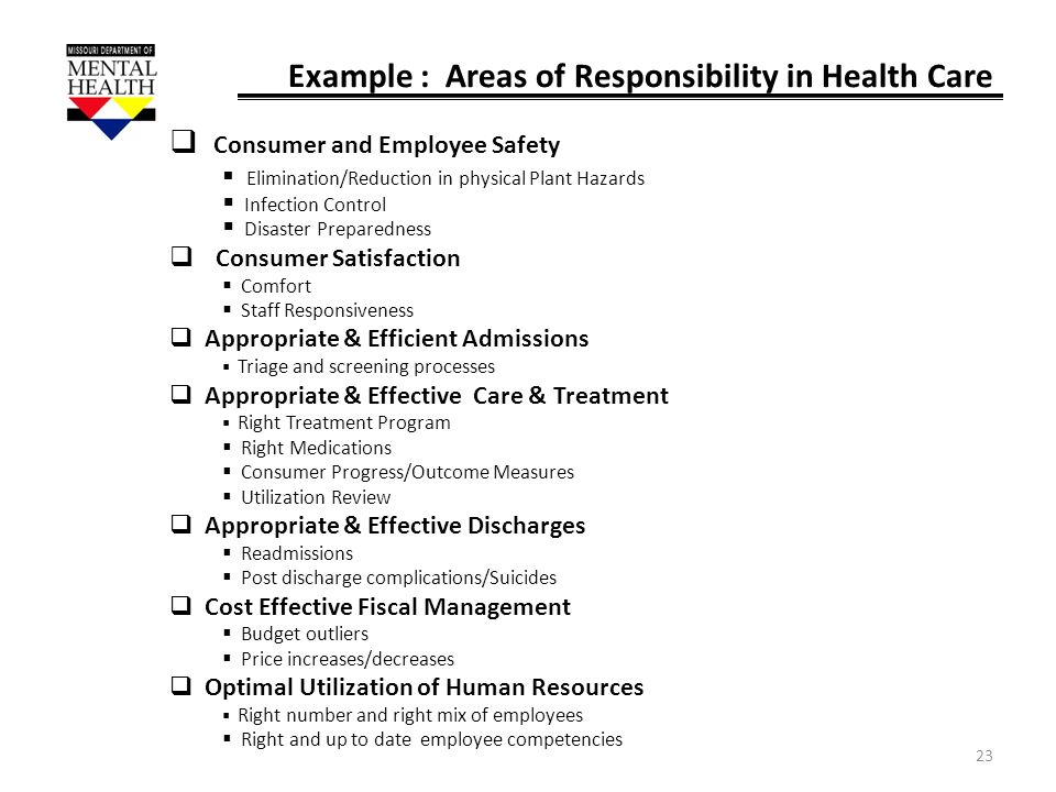 Example : Areas of Responsibility in Health Care