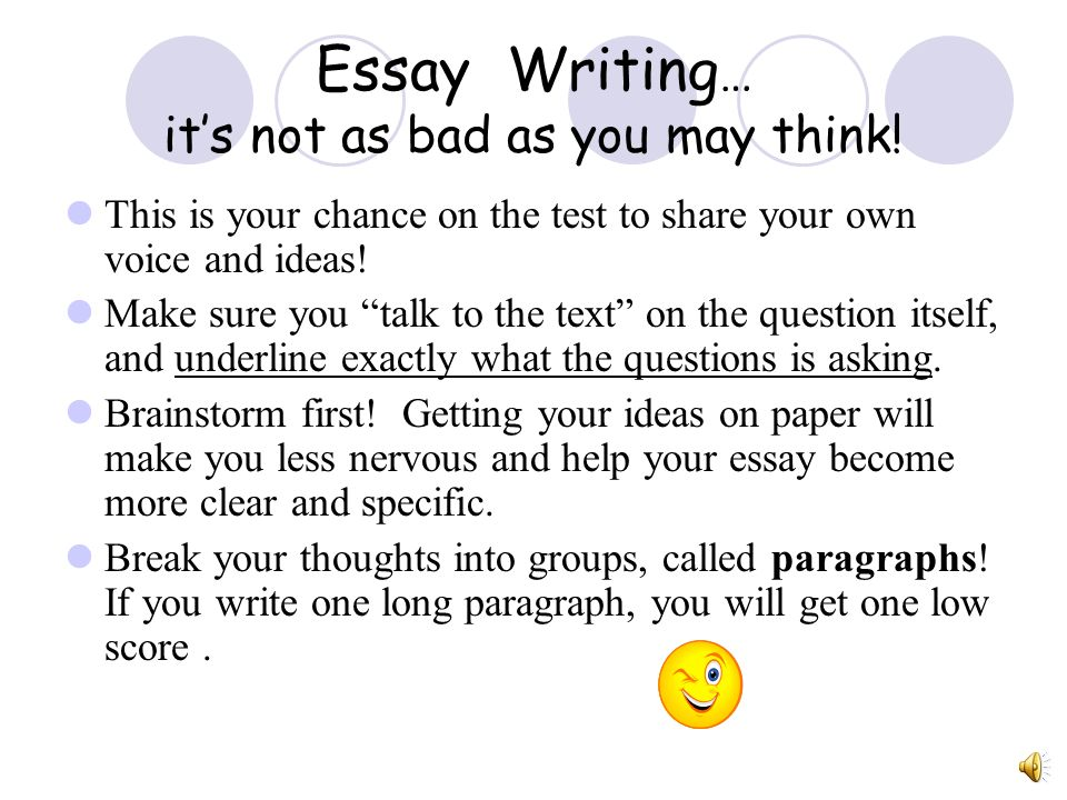 Essay Writing… it's not as bad as you may think!