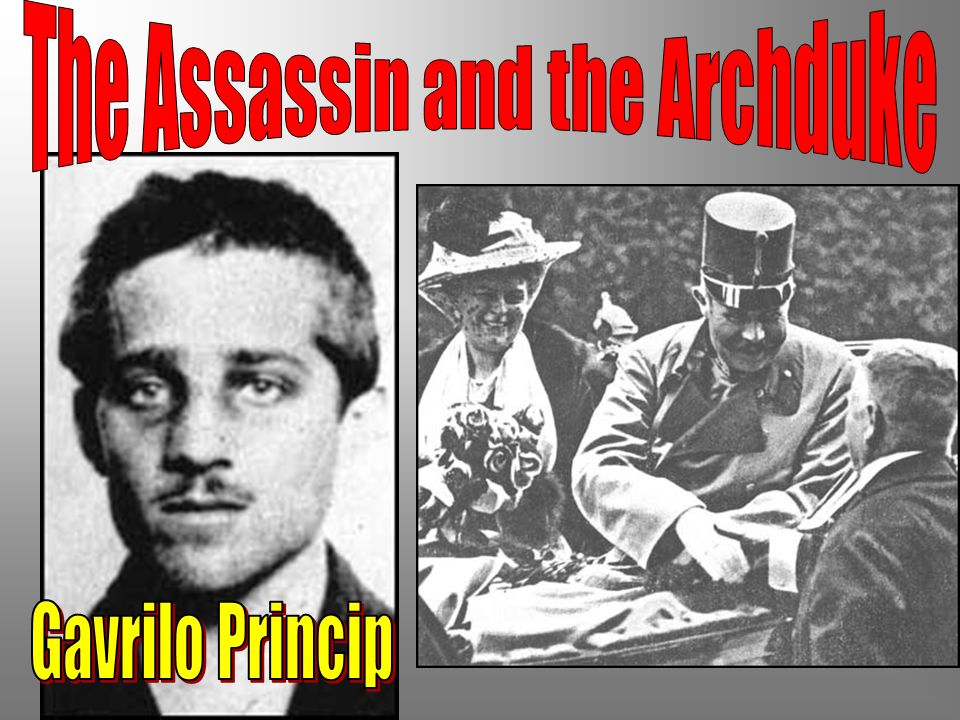 The Assassin and the Archduke