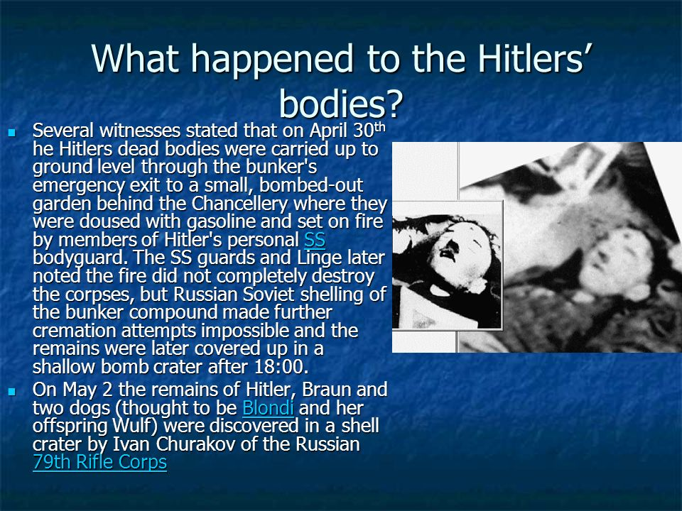 What happened to the Hitlers' bodies