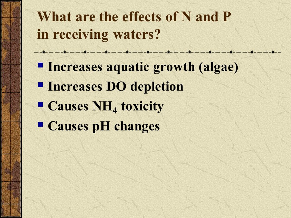 What are the effects of N and P in receiving waters