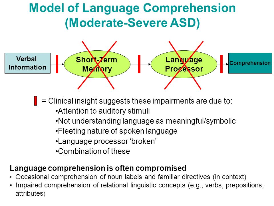 Model of Language Comprehension (Moderate-Severe ASD)