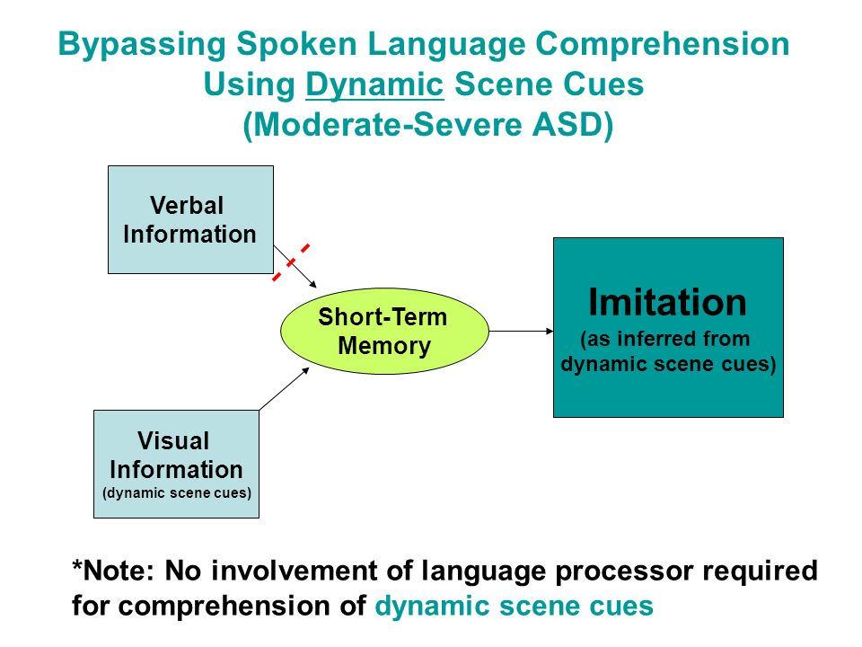 Bypassing Spoken Language Comprehension Using Dynamic Scene Cues (Moderate-Severe ASD)