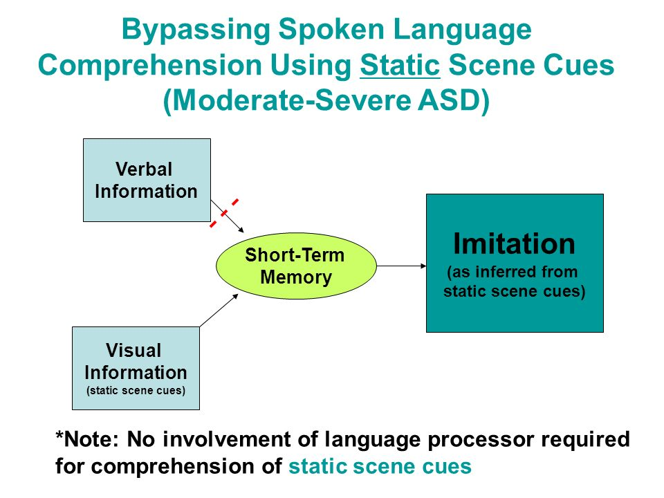 Bypassing Spoken Language Comprehension Using Static Scene Cues (Moderate-Severe ASD)
