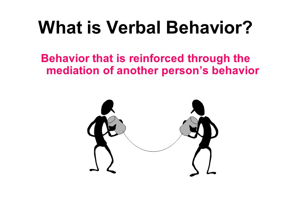 What is Verbal Behavior